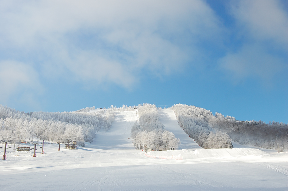 Sugadaira Kogen Pinebeak Omatsu and Tsubakuro Ski Resort